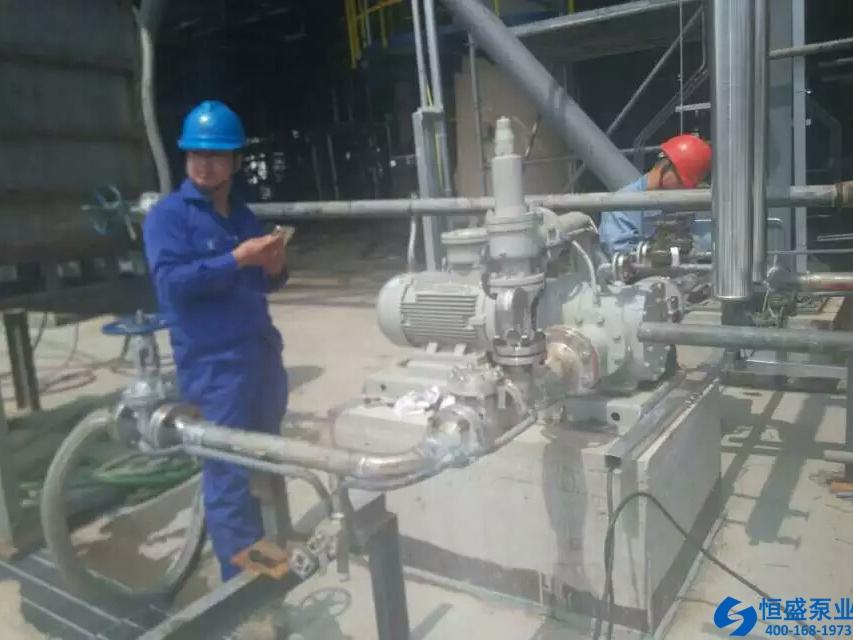 泊头无泄漏磁力泵 (4)