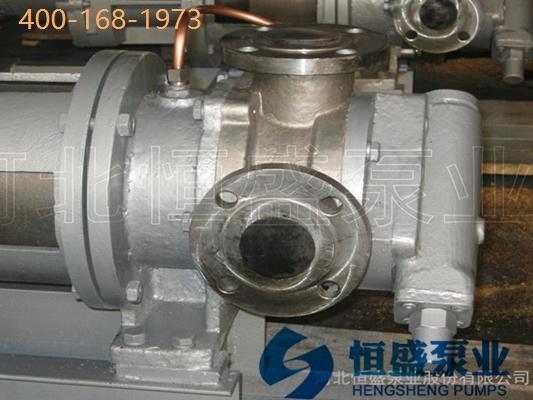 无泄漏泵 (9)