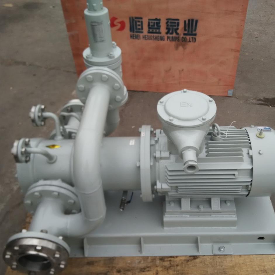 YCB-M磁力驱动齿轮泵