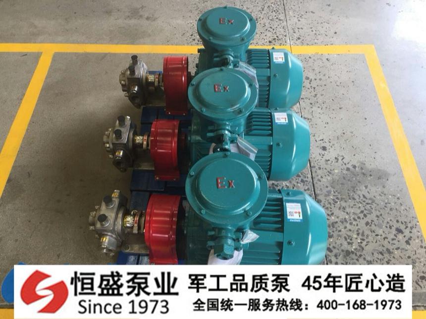不锈钢齿轮泵 (5)