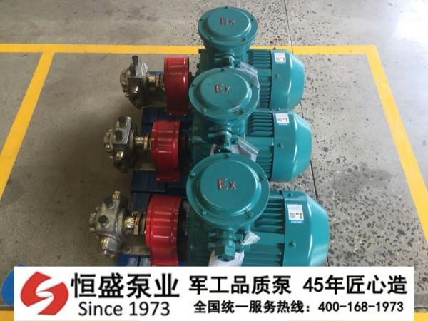 泊头不锈钢齿轮泵0011 (3)