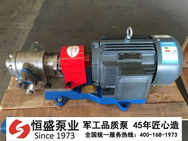 泊头不锈钢齿轮泵0011 (1)