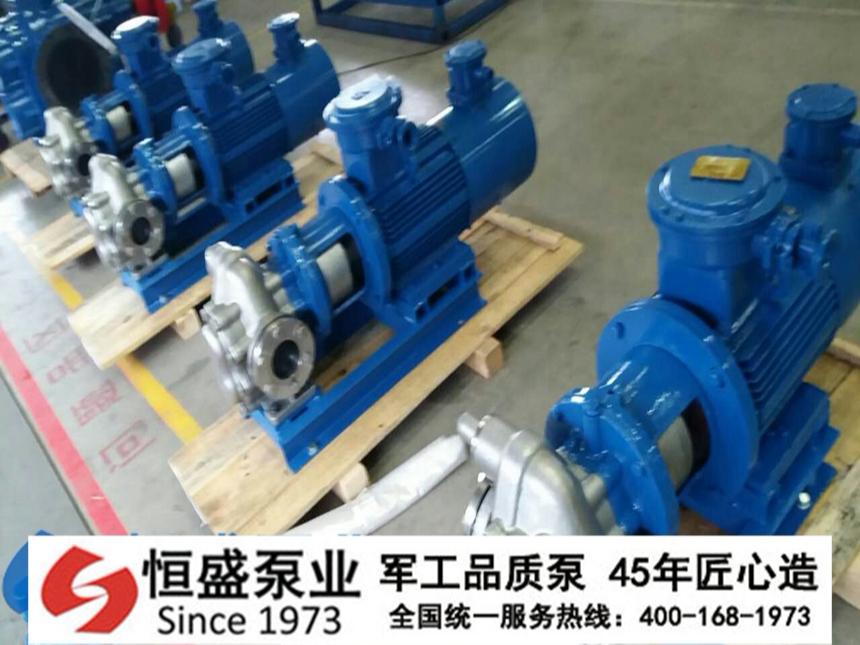 不锈钢齿轮泵 (1)