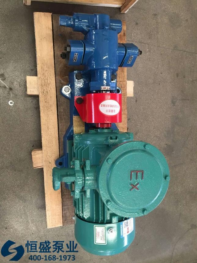 泊头不锈钢齿轮泵 (558)
