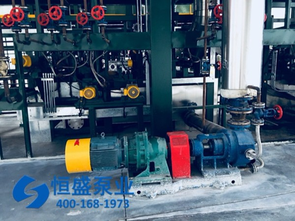 泊头高粘度泵 (1)