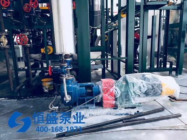 泊头高粘度泵1213