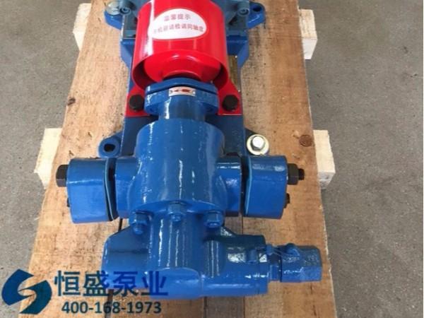泊头不锈钢齿轮泵 (0105)