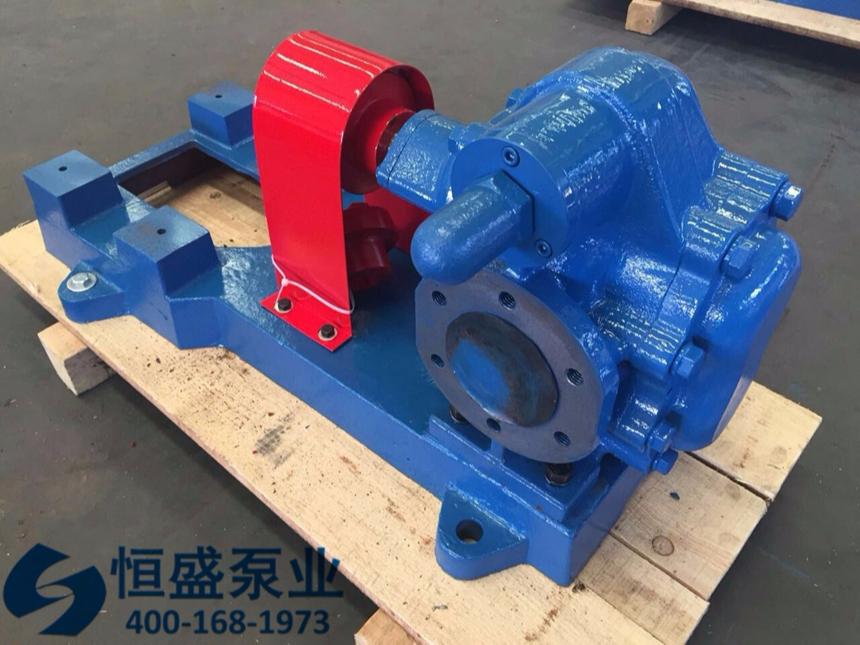 泊头不锈钢齿轮泵 (15454)