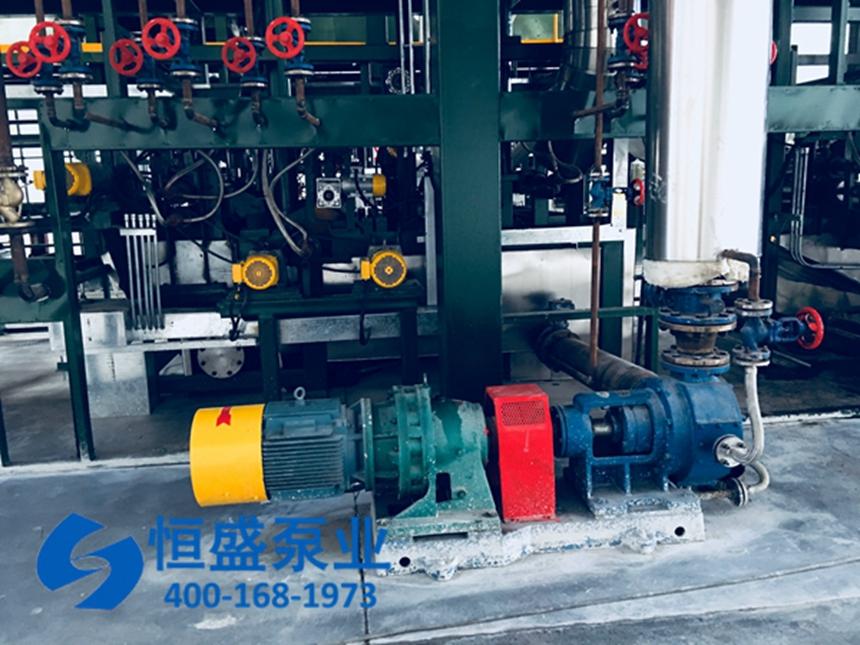 泊头沥青泵 (31211)