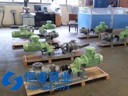 高粘度泵 (8)