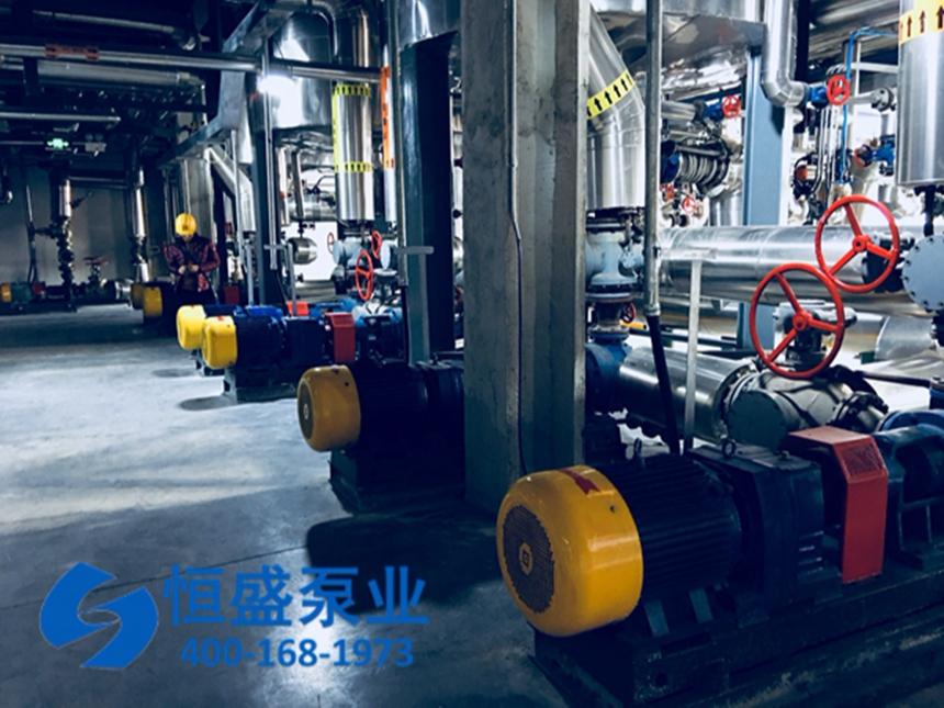 泊头沥青泵 (2)