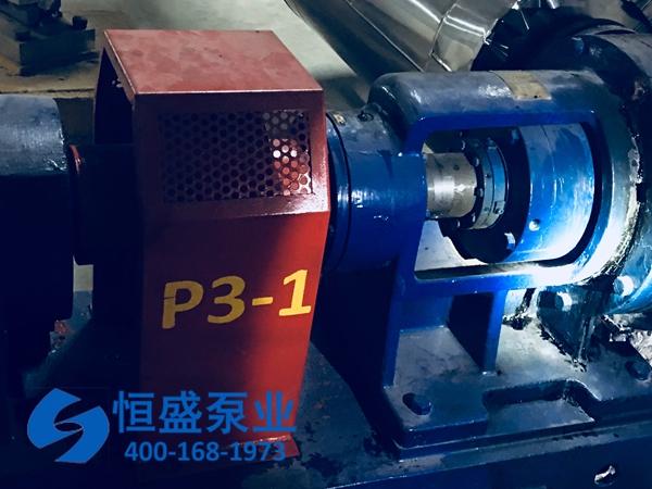 泊头高粘度泵32