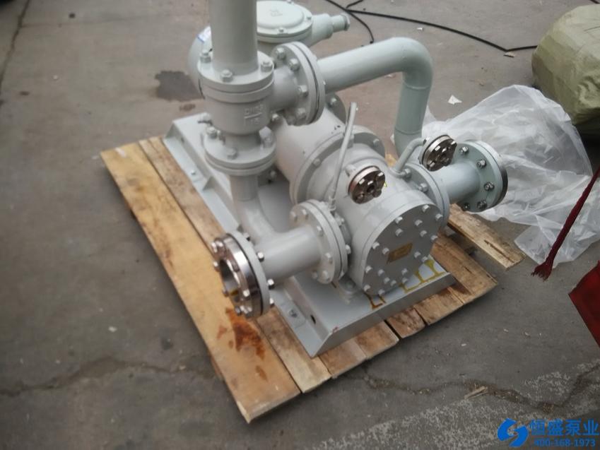 泊头无泄漏泵 (2)
