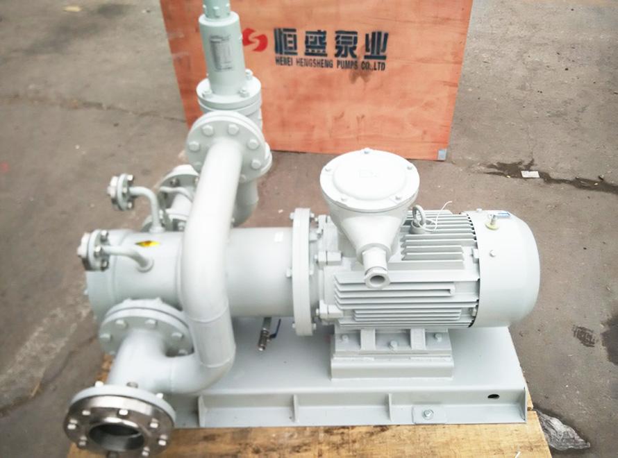 YCB磁力圆弧齿轮泵