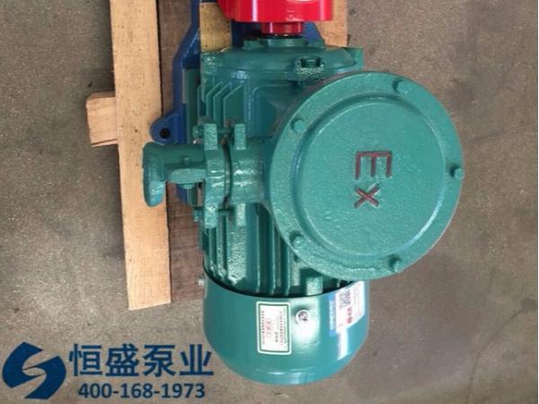 泊头不锈钢齿轮泵 (013)