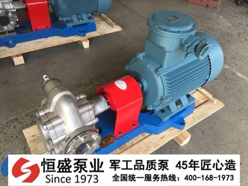 不锈钢齿轮泵 (4)