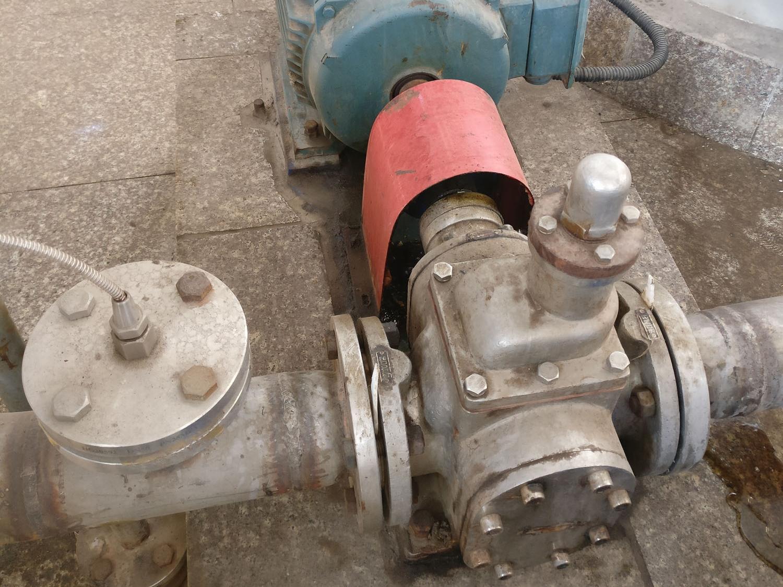 不锈钢齿轮泵