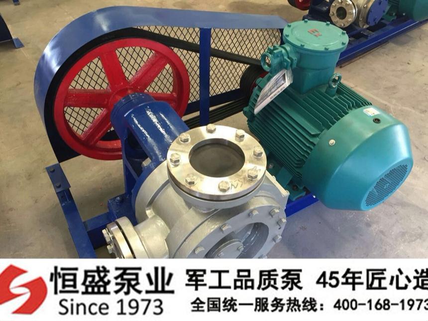 NYP高粘度泵03