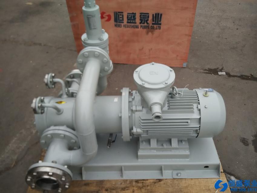 泊头无泄漏磁力泵 (11)