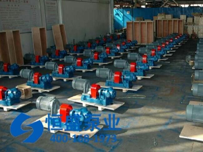 高粘度泵 (7)