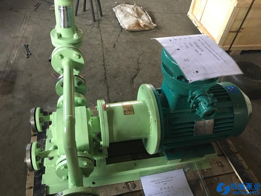 泊头无泄漏磁力泵 (7)