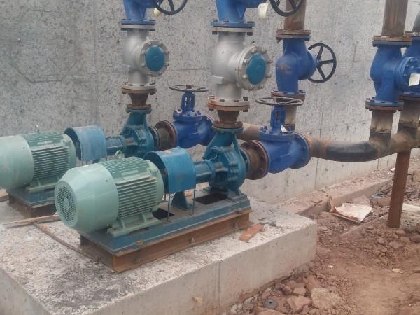 RY型导热油泵