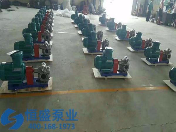 泊头不锈钢齿轮泵 (4)
