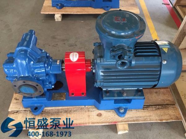 泊头不锈钢齿轮泵 (14)