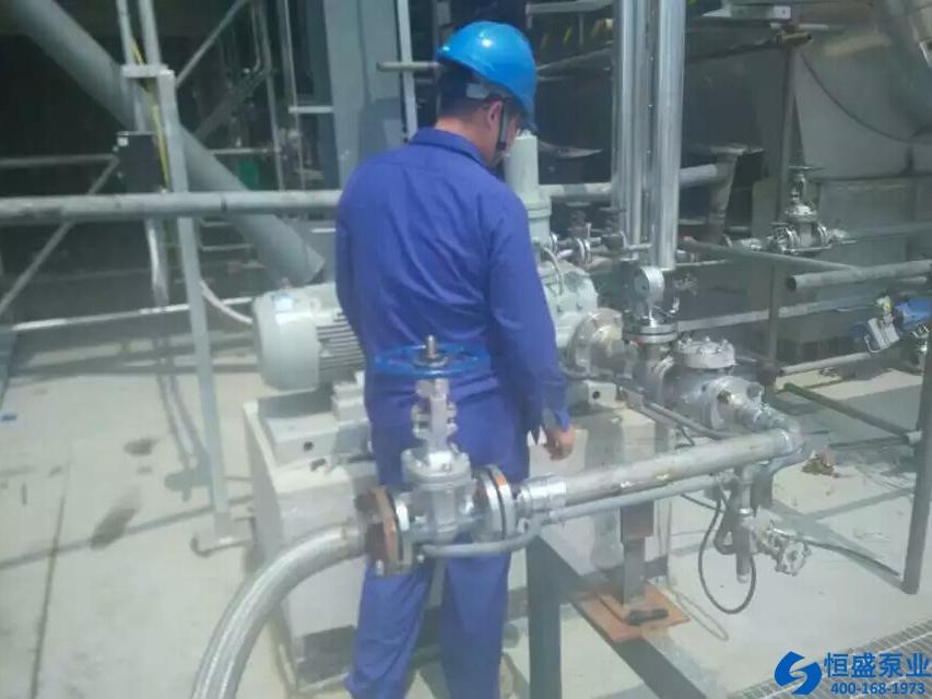 泊头无泄漏磁力泵 (3)