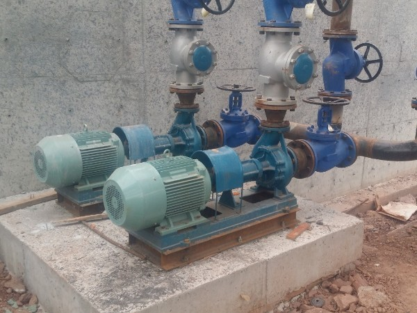RY导热油泵
