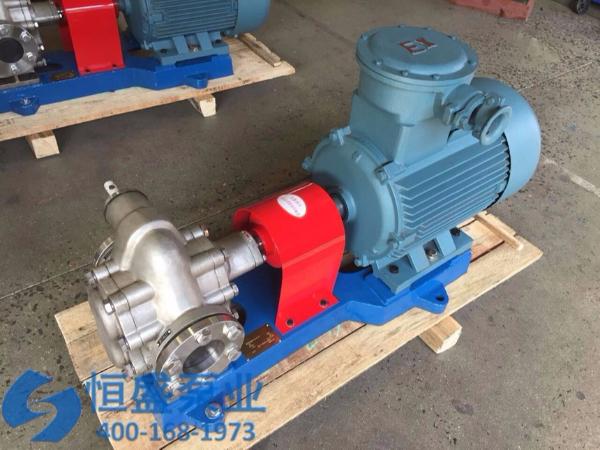 泊头不锈钢齿轮泵 (1221)