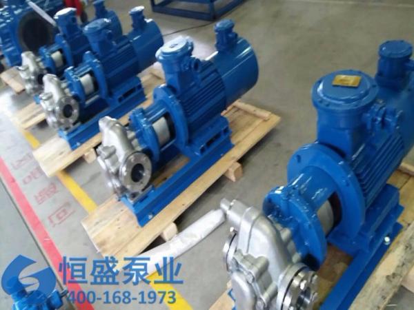 泊头不锈钢齿轮泵 (532)