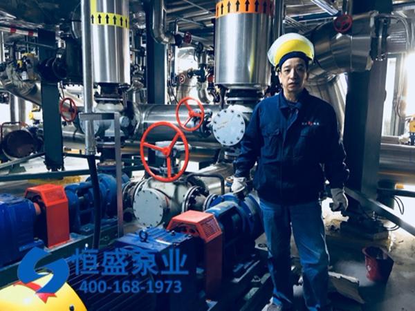 泊头沥青泵 (4)