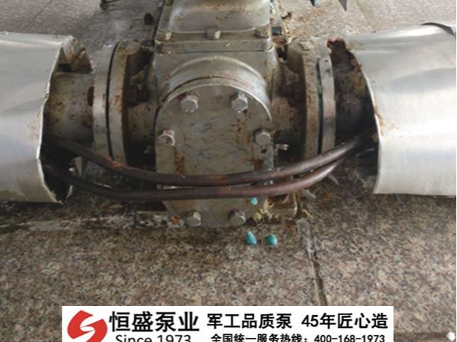 不锈钢齿轮泵 (3)