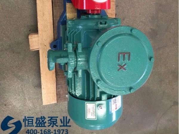 泊头齿轮泵 (613)