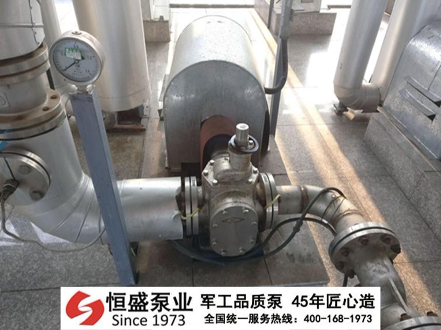 不锈钢圆弧齿轮泵的保养与使用