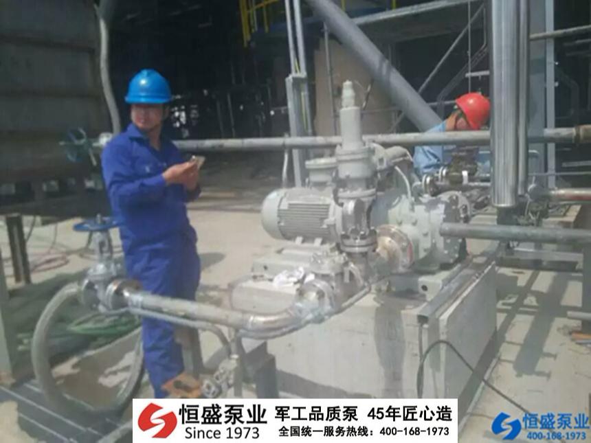 泊头无泄漏泵 (4)