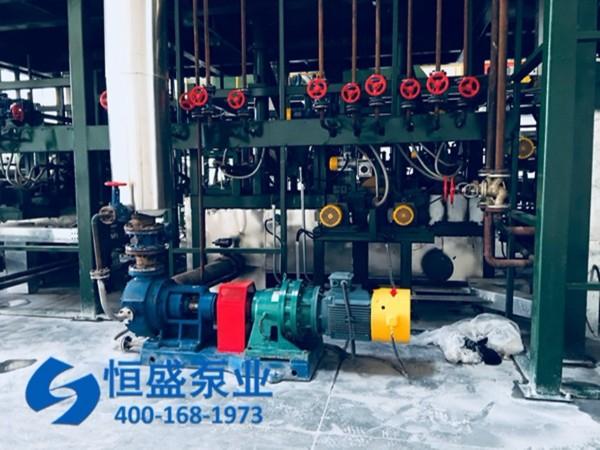 泊头高粘度泵 (5)