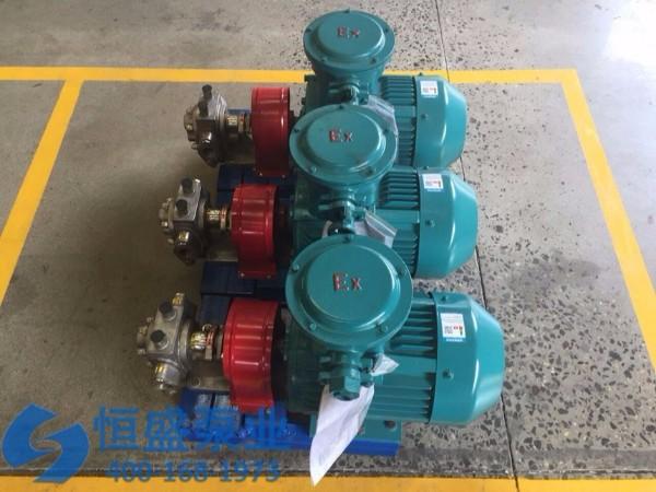 泊头不锈钢齿轮泵 (7812)
