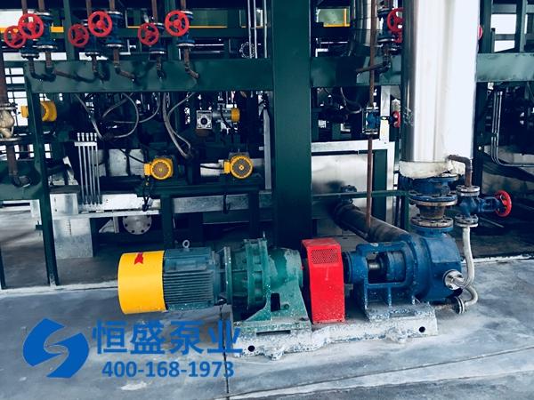 泊头高粘度泵 (3352)