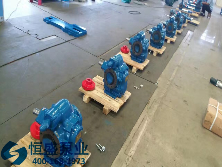 泊头齿轮泵 (24)