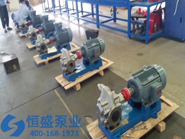 泊头不锈钢齿轮泵 (655)