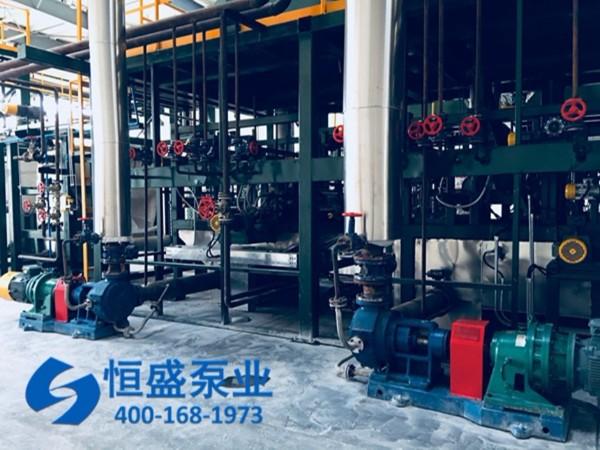泊头高粘度泵 (4)