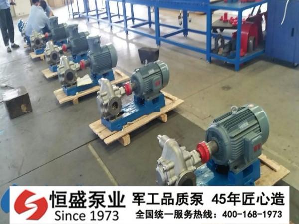 不锈钢齿轮泵 (2)