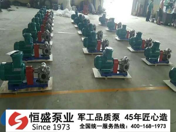 不锈钢齿轮泵 (6)