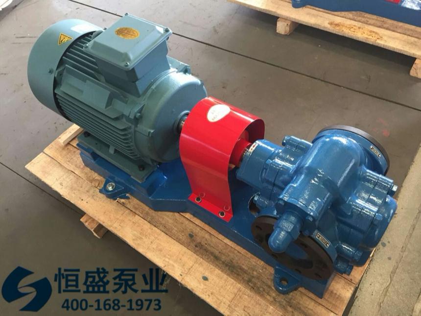 泊头高粘度齿轮泵 (4)
