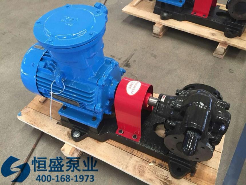 泊头高粘度齿轮泵 (2)