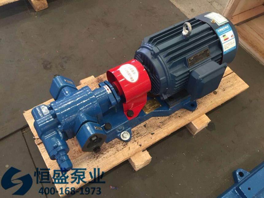 泊头高粘度齿轮泵 (1)