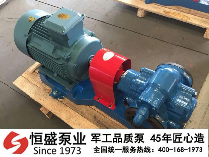 泊头齿轮泵15